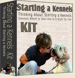 Starting a Boarding Kennels or Luxury Dog Hotel